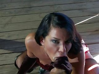 Buxom Dark-haired Savannah Stern In Boots And Lengthy Gloves Is